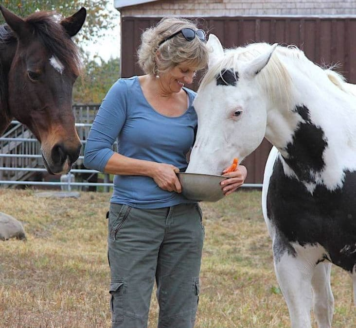 EP036 Kathy Stevens: Founder of Catskill Animal Sanctuary